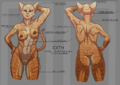 Reference sheet - cath - Nude Labelled.png