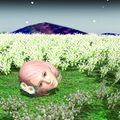 The cutest flower in the field by dangerengineer-db1igs2.jpg