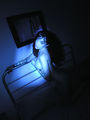 BLUE SUNDAY IN HER DARK ROOM AT THE SANITARIUM.jpg